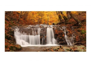 Fototapeta XXL - Autumn landscape: waterfall in forest